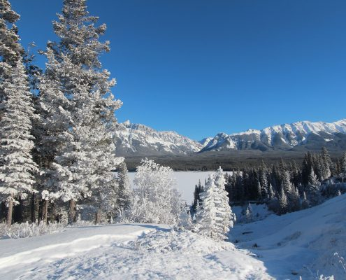 Here's How You Can Enjoy Winter In Canada